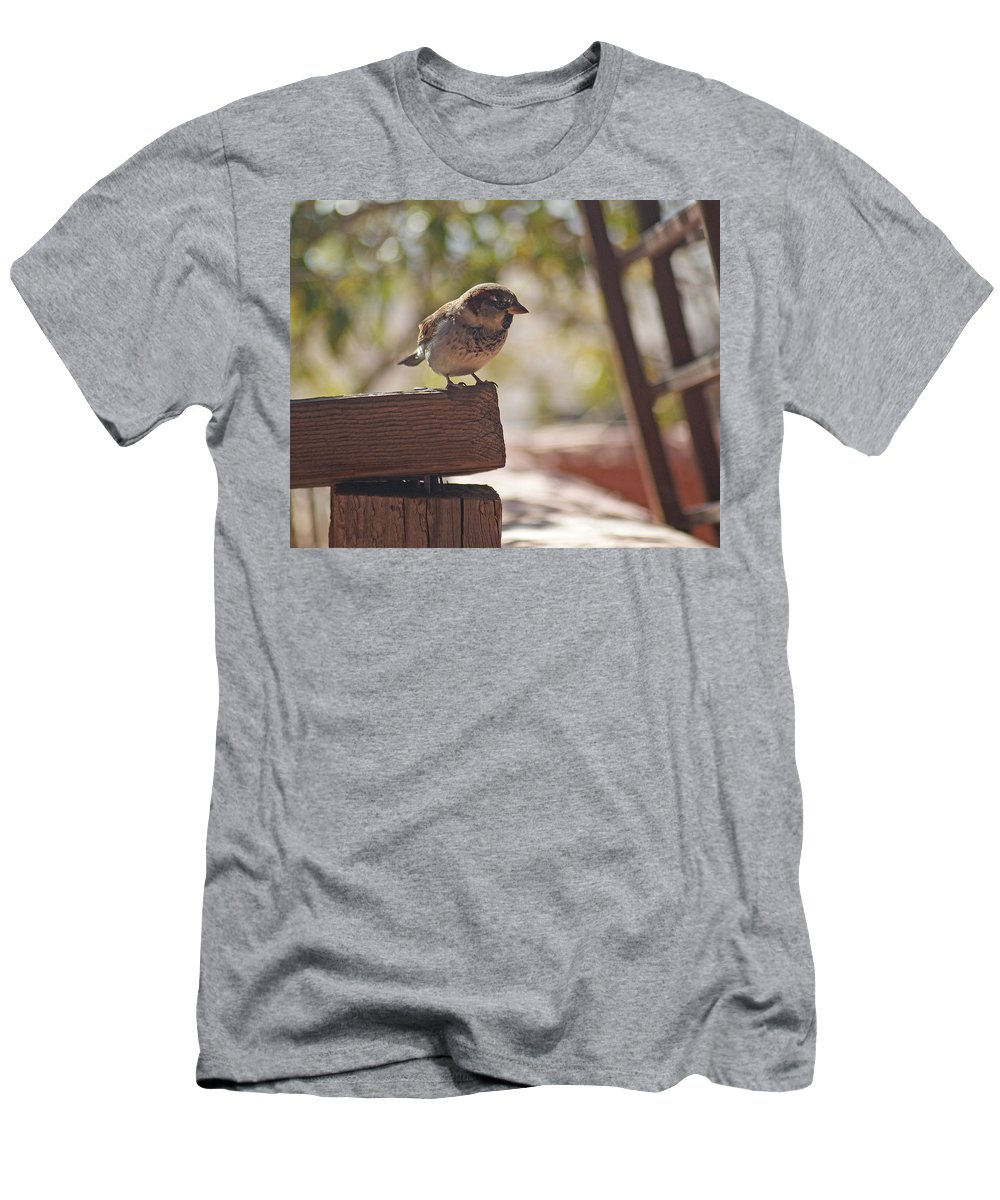 Sparrow Men's T-Shirt (Athletic Fit) featuring the photograph Sparrow. by Robert Rodda