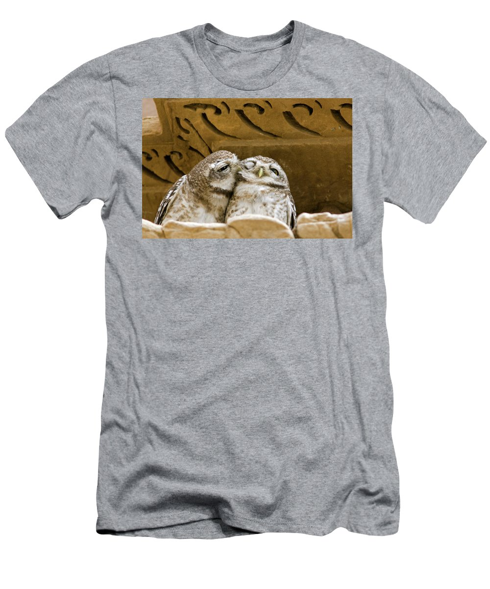 Spotted Owlet Men's T-Shirt (Athletic Fit) featuring the photograph Spotted Owlets by Aivar Mikko