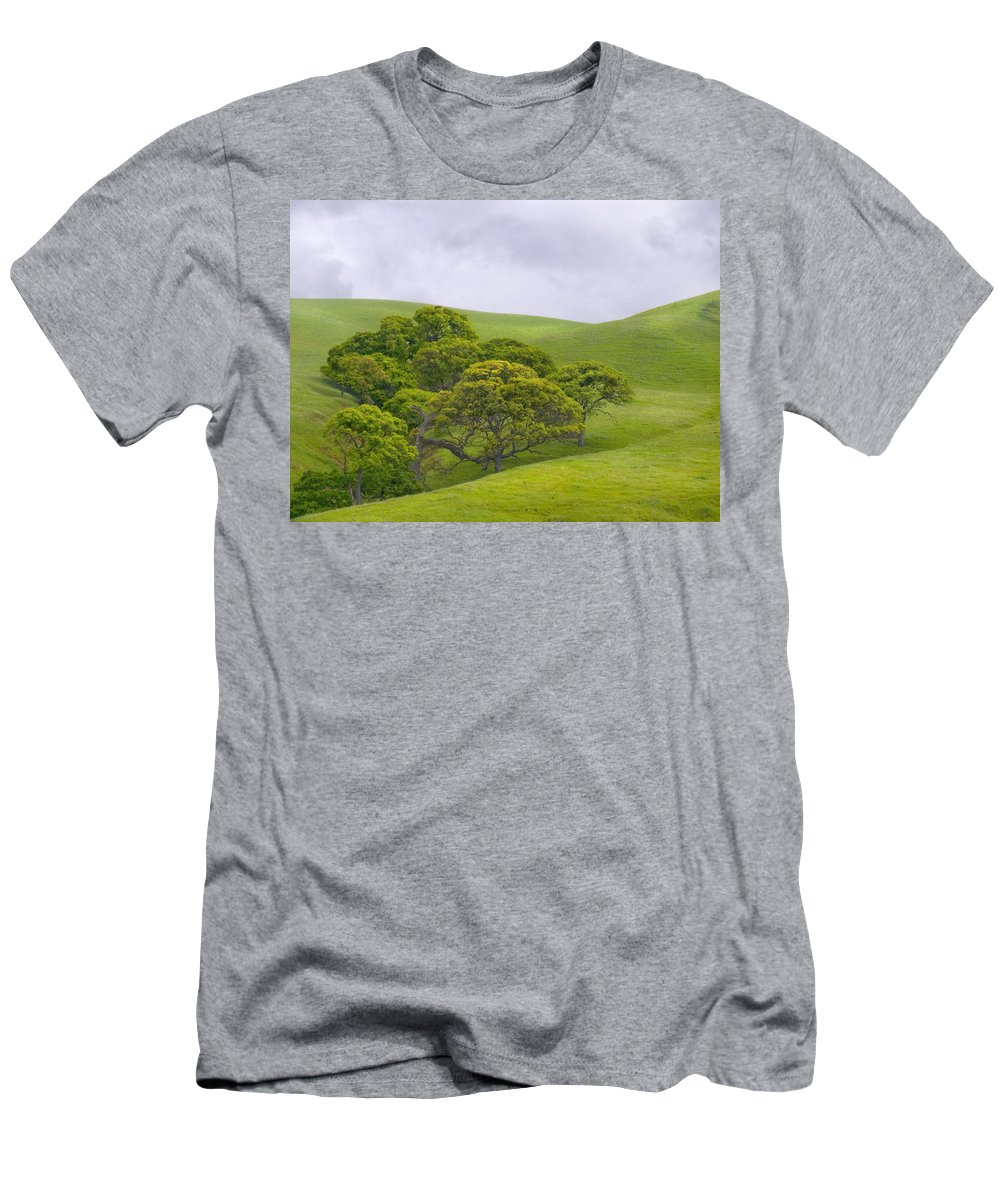 Landscape Men's T-Shirt (Athletic Fit) featuring the photograph Spring At Del Valle by Karen W Meyer