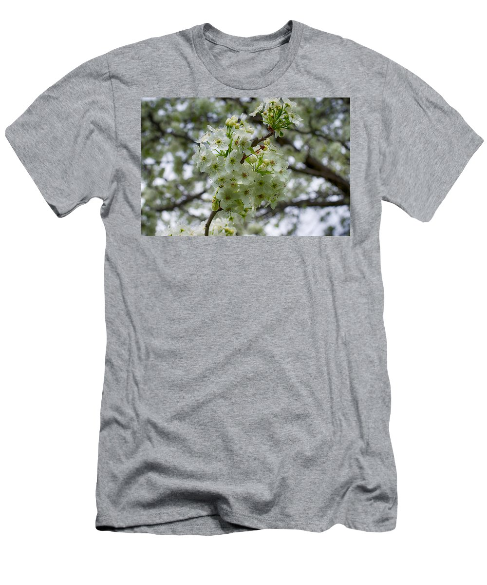 Spring Men's T-Shirt (Athletic Fit) featuring the photograph Spring Series #22 by John Diebolt