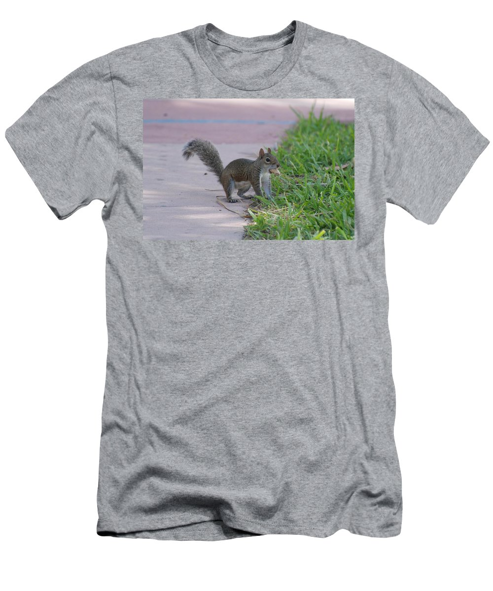 Squirrels Men's T-Shirt (Athletic Fit) featuring the photograph Squirrel Nuts by Rob Hans