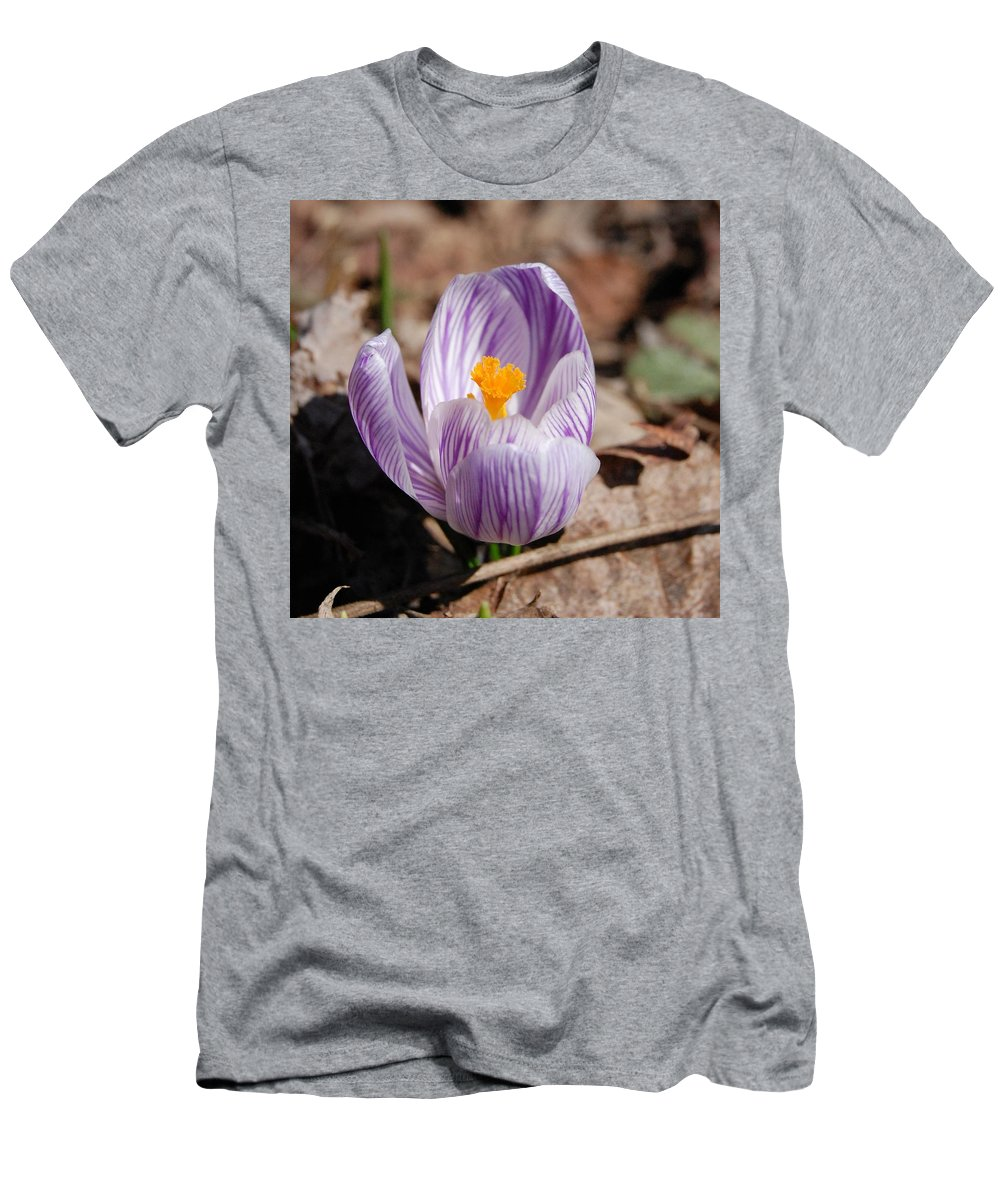Digital Photography Men's T-Shirt (Athletic Fit) featuring the photograph Striped Crocus by David Lane