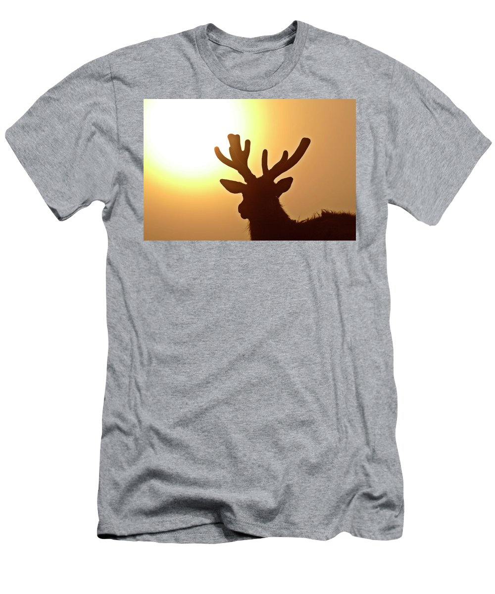 Elk Men's T-Shirt (Athletic Fit) featuring the digital art Sun Glaring Over A Bull Elk by Mark Duffy
