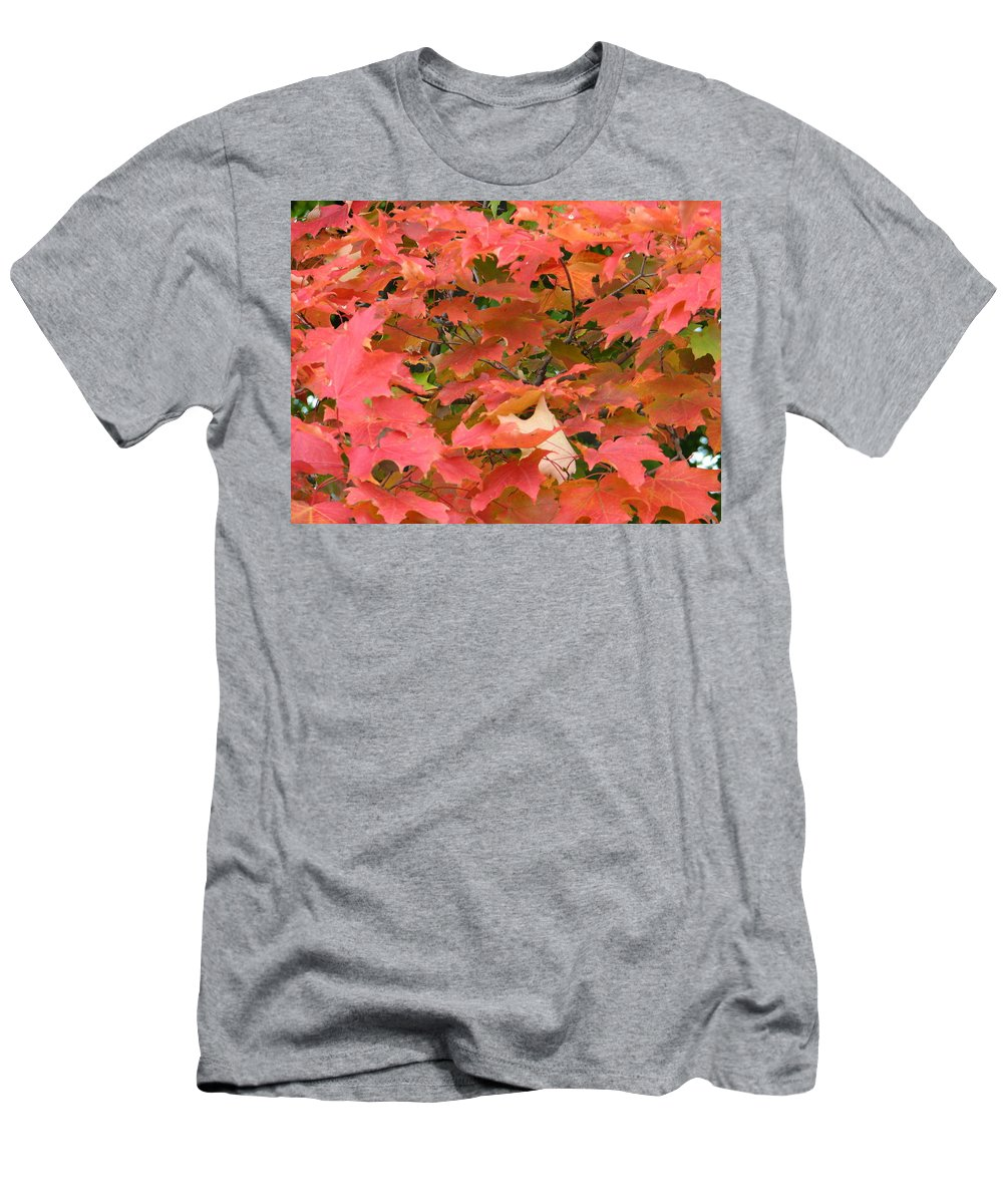 Leaves Men's T-Shirt (Athletic Fit) featuring the photograph Sunburst by Kelly Mezzapelle