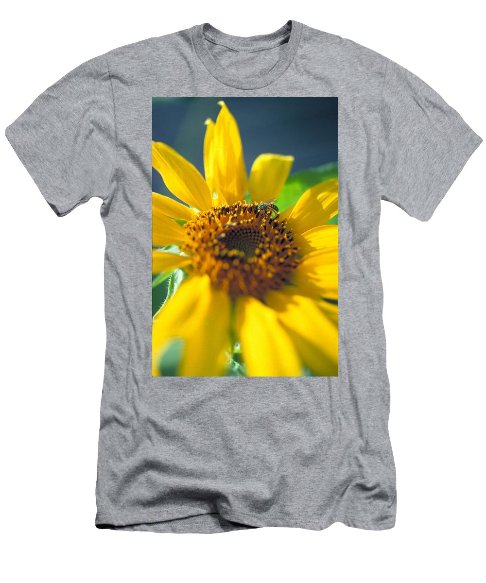 Sunflower Men's T-Shirt (Athletic Fit) featuring the photograph Sunflower And Bee Number Two by Thomas Firak