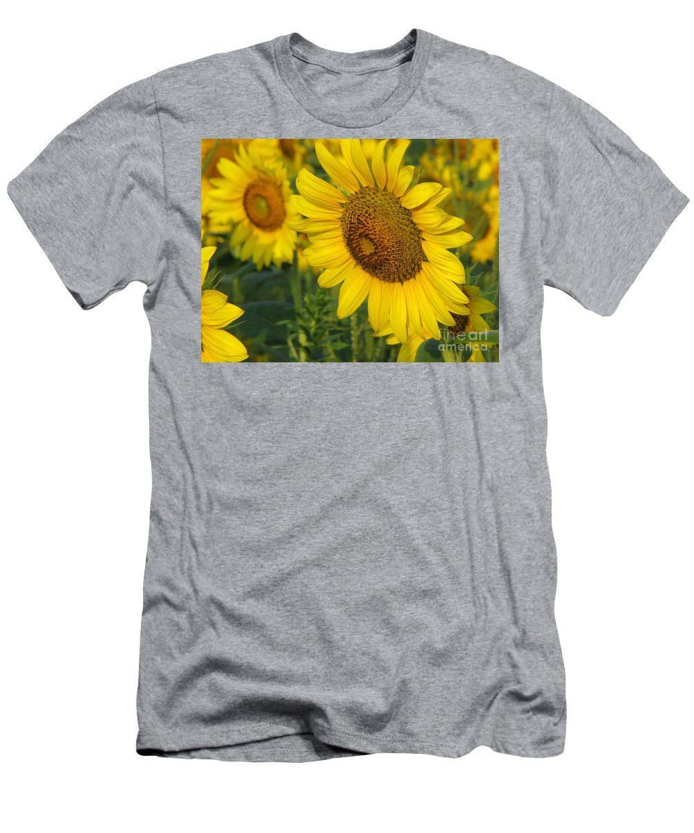 Sunflowers T-Shirt featuring the photograph Sunflower series by Amanda Barcon