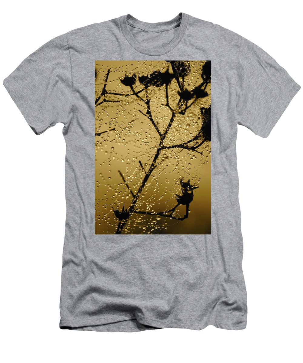 Dewdrops On Spider Web Men's T-Shirt (Athletic Fit) featuring the photograph Sunrise Sparkle by Carol Groenen