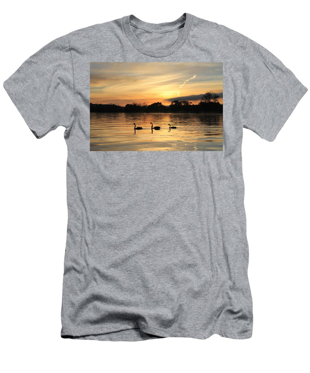 Sunrise Men's T-Shirt (Athletic Fit) featuring the photograph Swans At Dawn by Anthony Croke