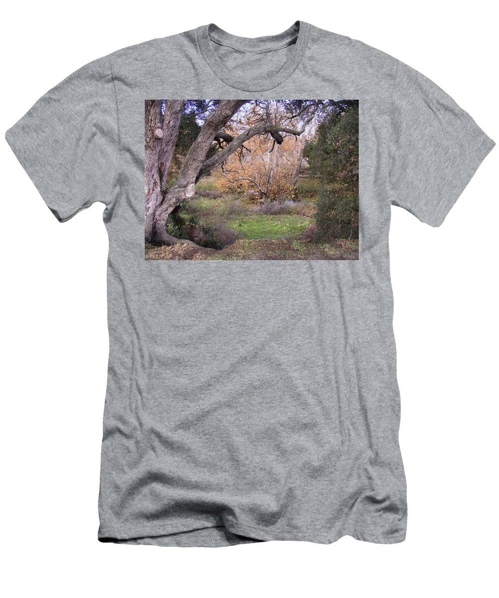 Landscape Men's T-Shirt (Athletic Fit) featuring the photograph Sycamore Grove Fall by Karen W Meyer