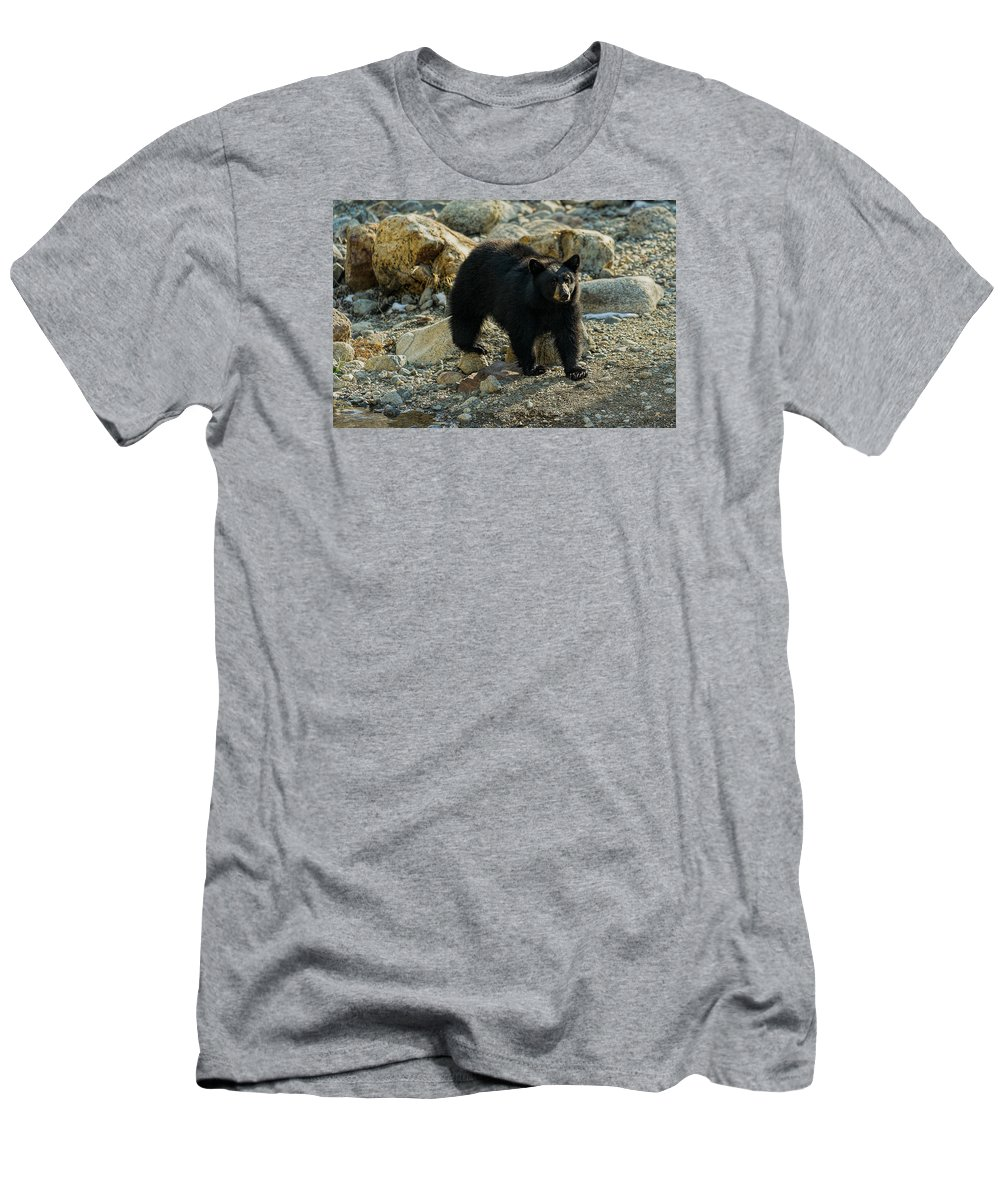 American Black Bear Men's T-Shirt (Athletic Fit) featuring the photograph Teddy Bear by Dennis Bolton