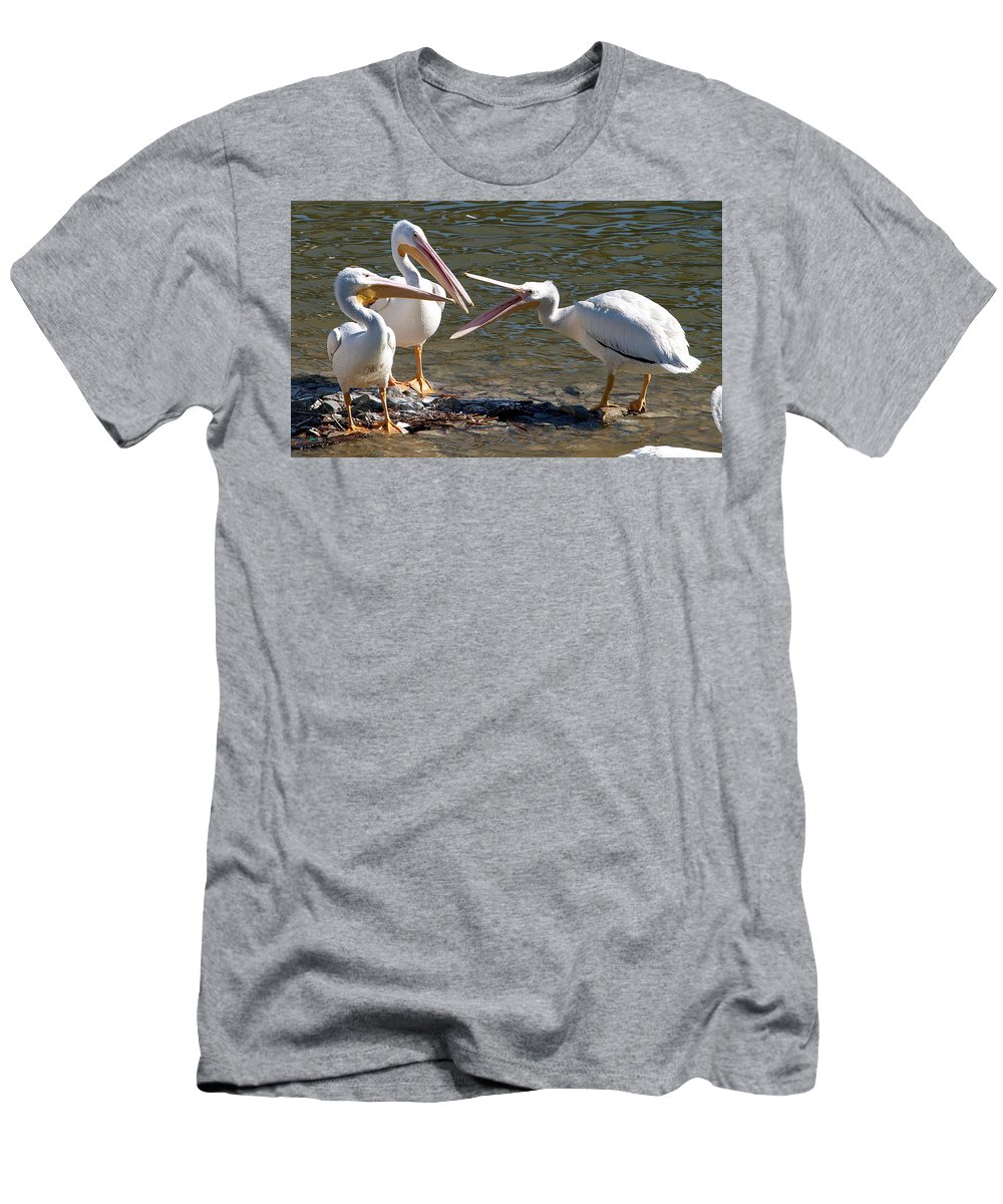 American White Pelican Men's T-Shirt (Athletic Fit) featuring the photograph The Argument by Kala King