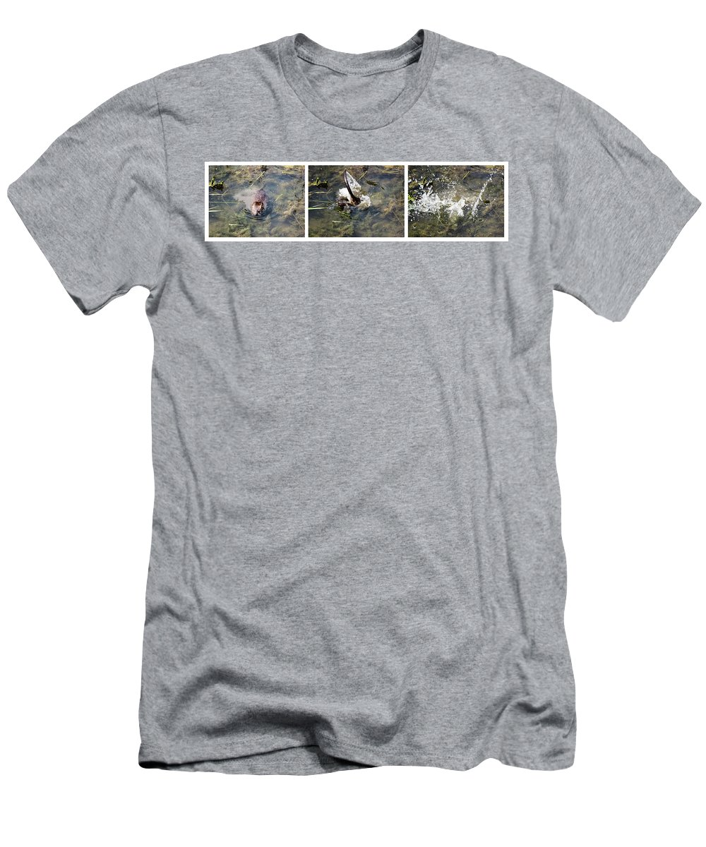 The Great Beaver Escape Triptych Men's T-Shirt (Athletic Fit) featuring the photograph The Great Beaver Escape Triptych by Cynthia Woods