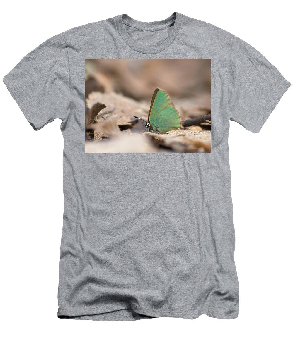 Lehtokukka Men's T-Shirt (Athletic Fit) featuring the photograph The Green Hairstreak by Jouko Lehto