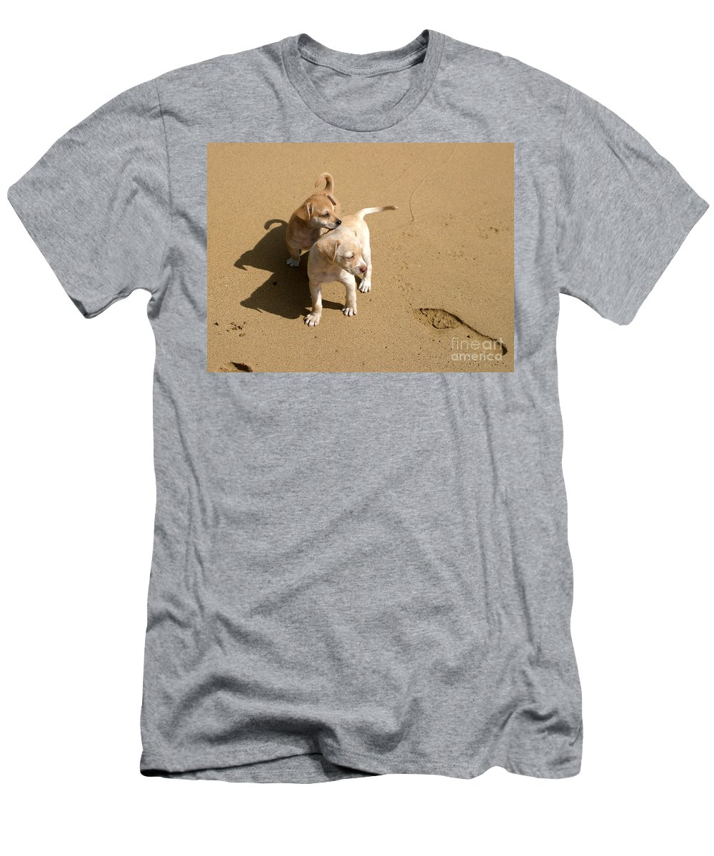 Dogs Men's T-Shirt (Athletic Fit) featuring the photograph The Puppies by Madeline Ellis