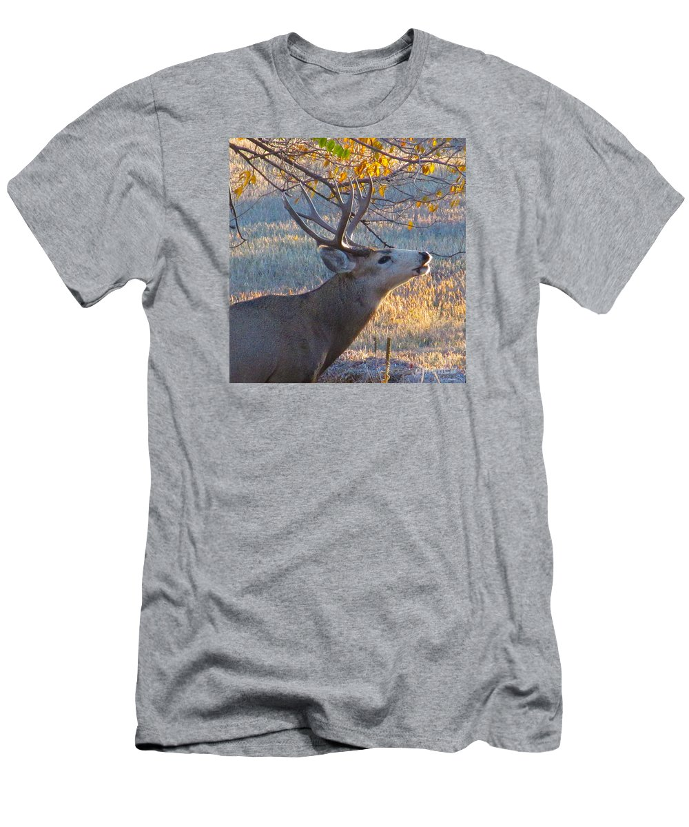 Deer Men's T-Shirt (Athletic Fit) featuring the photograph The Rut by Jeff Birr