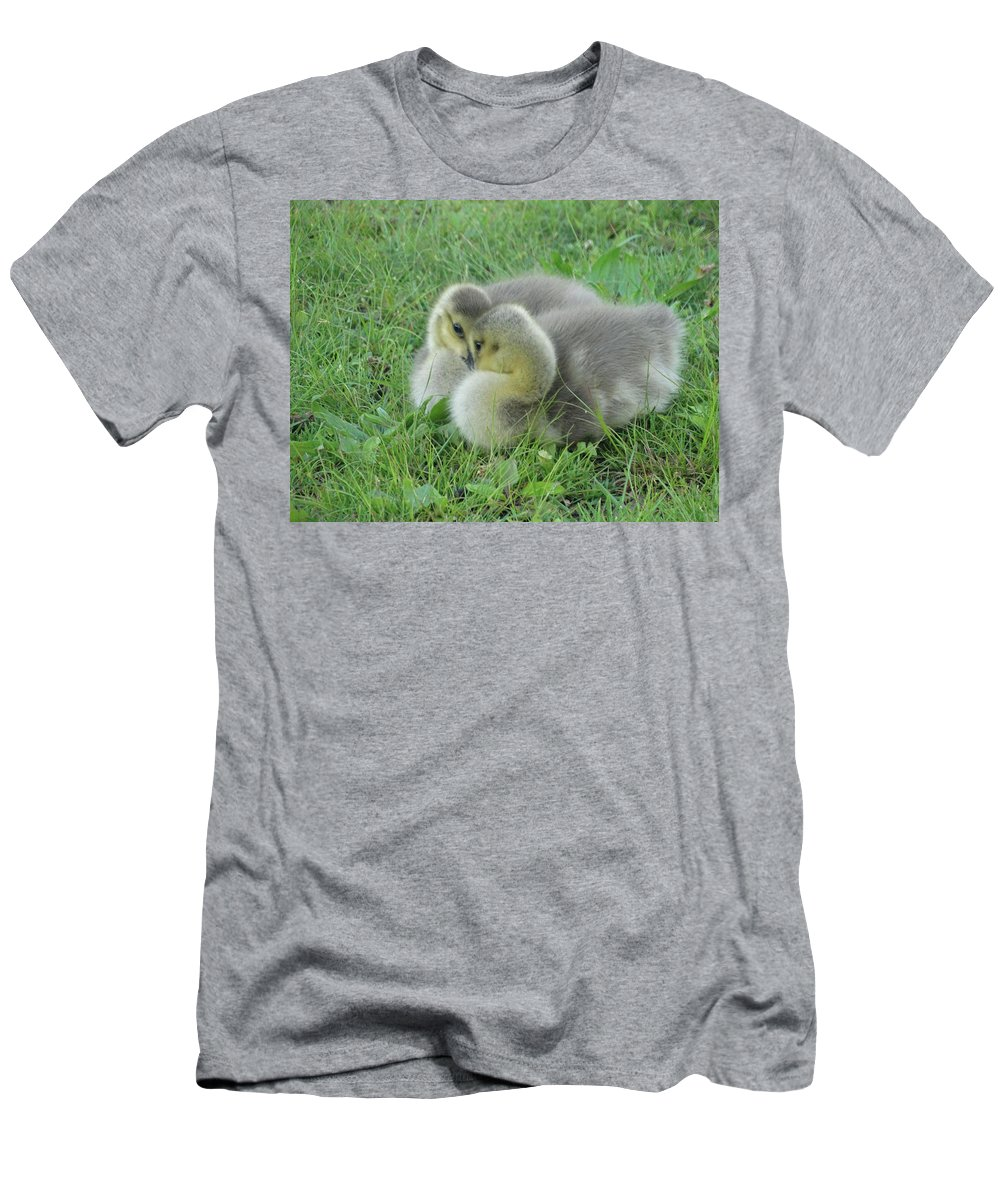 Bird Men's T-Shirt (Athletic Fit) featuring the photograph The Stare Down by Greg Boutz