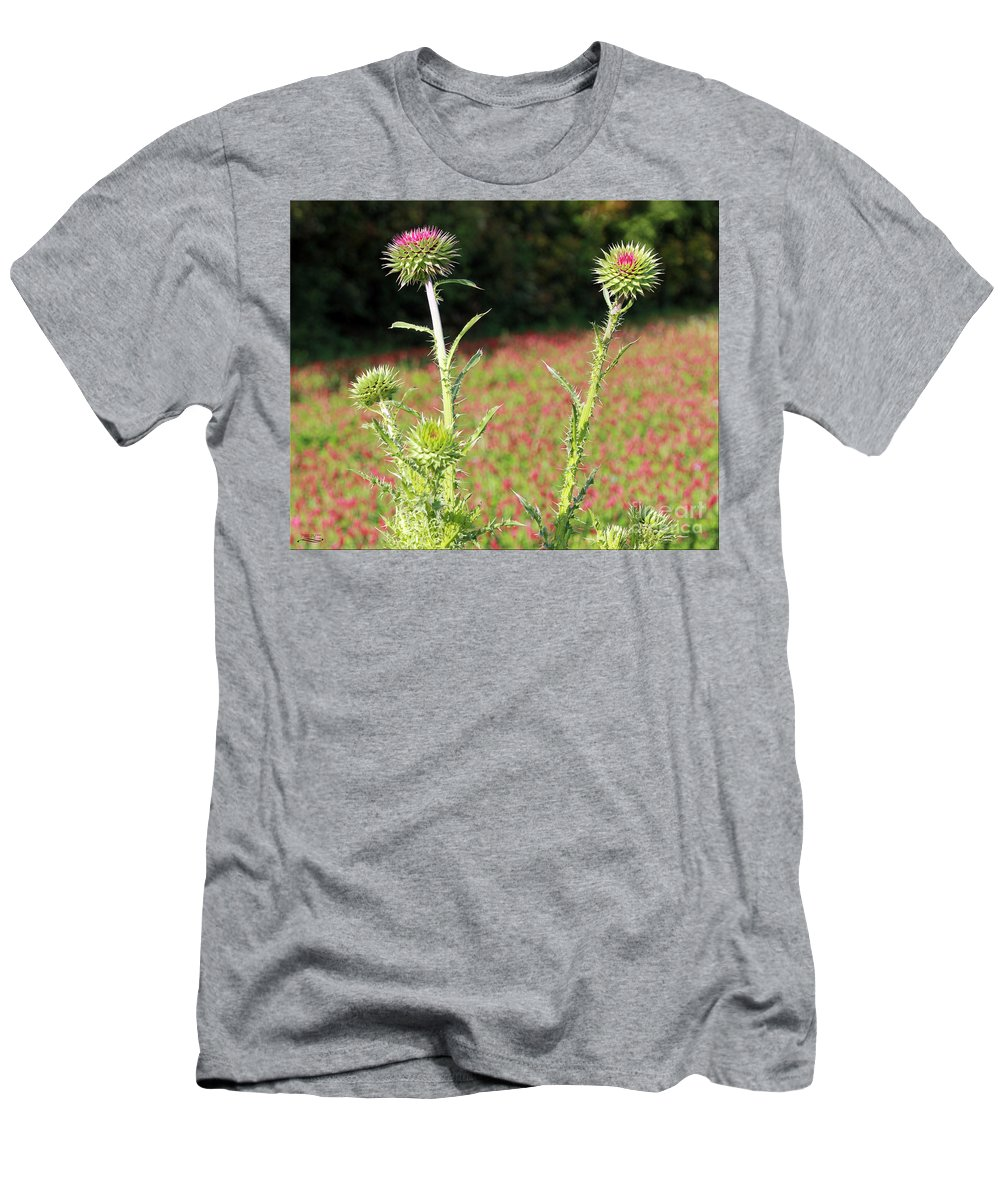 Texas Men's T-Shirt (Athletic Fit) featuring the photograph Thistles In A Field Of Clover by Rebecca Morgan