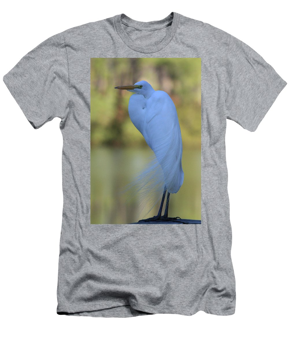 Heron Men's T-Shirt (Athletic Fit) featuring the photograph Thoughtful Heron by Kim Henderson
