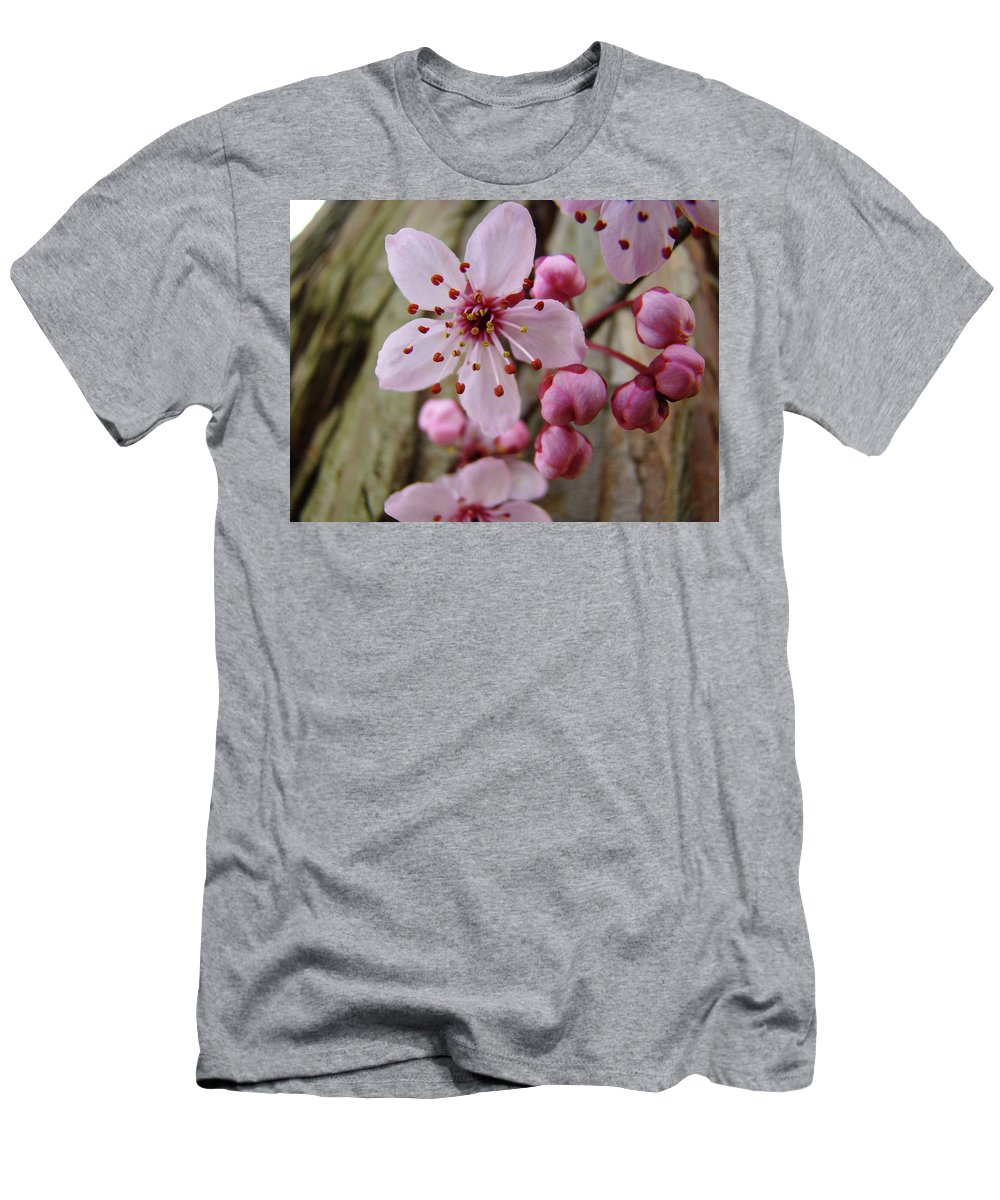Blossoms Men's T-Shirt (Athletic Fit) featuring the photograph Trees Art Prints Canvas Pink Blossoms Spring Blue Sky Baslee Troutman by Baslee Troutman