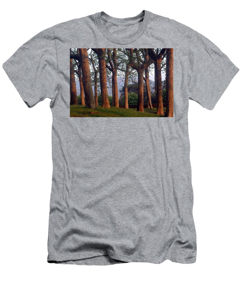 Landscape Men's T-Shirt (Athletic Fit) featuring the photograph Trees At Sunset by Stacey Lanning