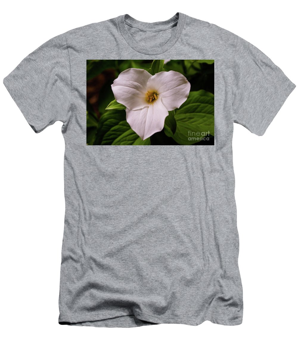 Trillium Men's T-Shirt (Athletic Fit) featuring the photograph Trillium by Kevin Gladwell