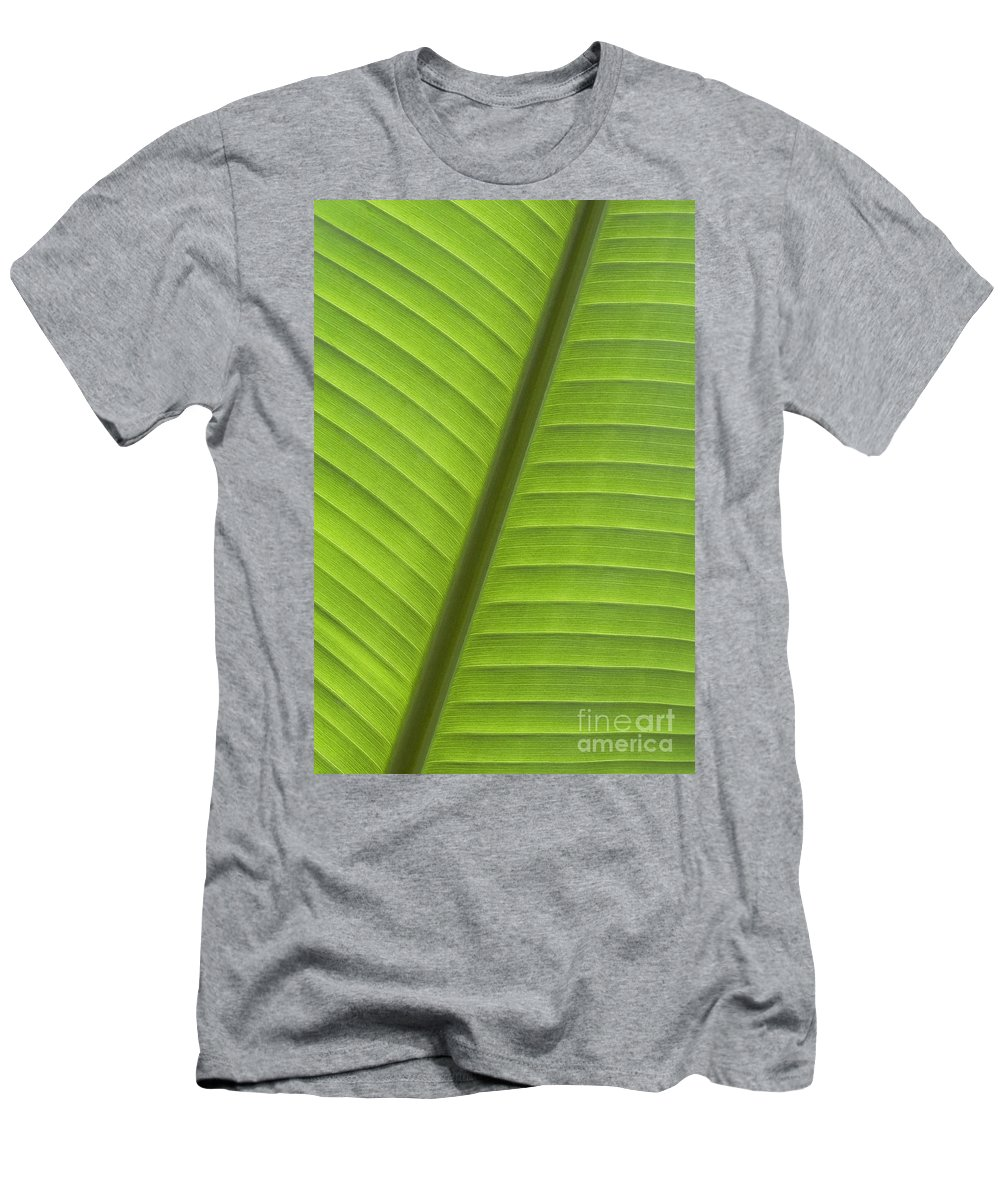 Abstract Men's T-Shirt (Athletic Fit) featuring the photograph Tropical Leaf Detail by Joe Carini - Printscapes