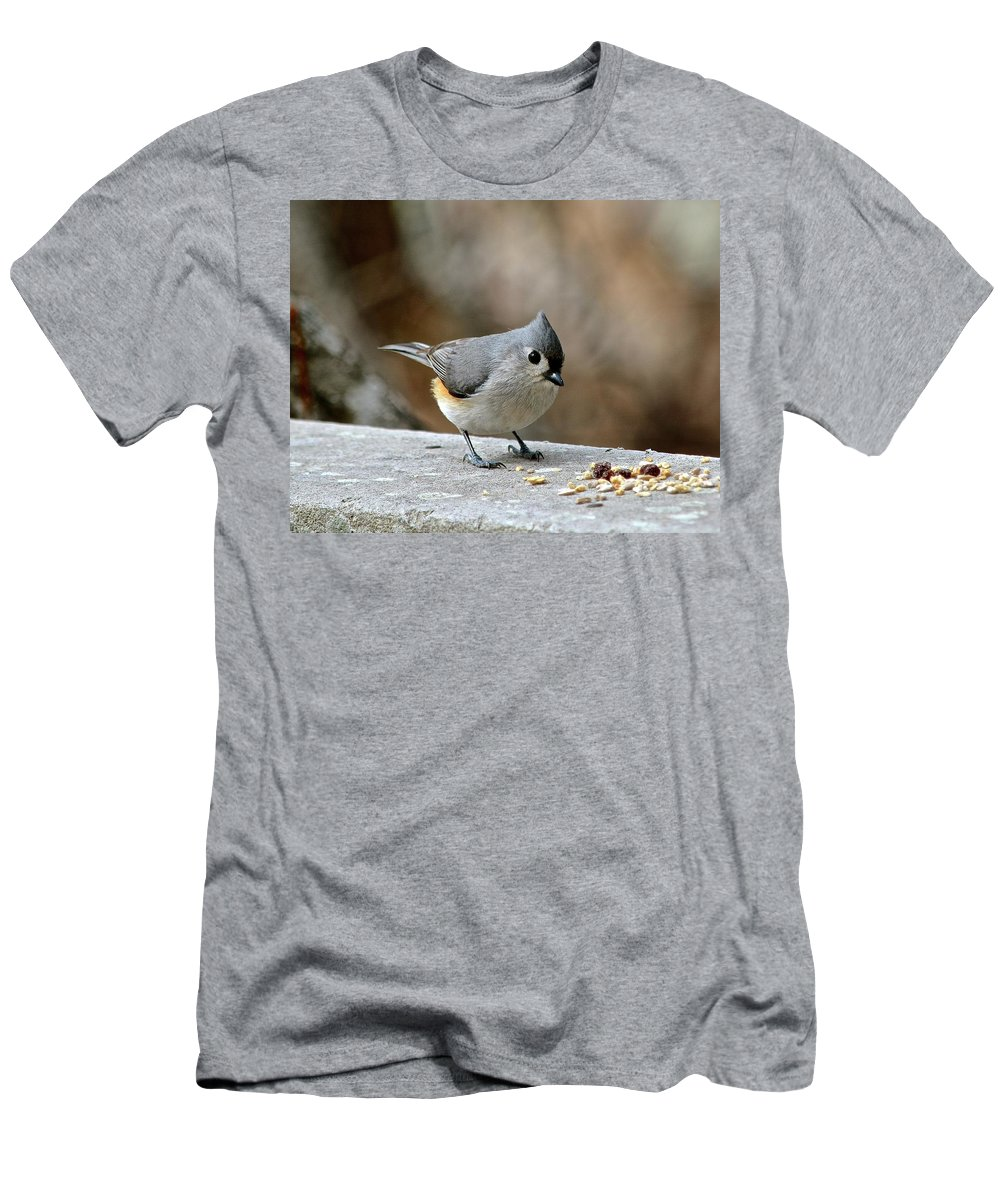 Tufted Titmouse Men's T-Shirt (Athletic Fit) featuring the photograph Tufted Titmouse by Susan Ballard