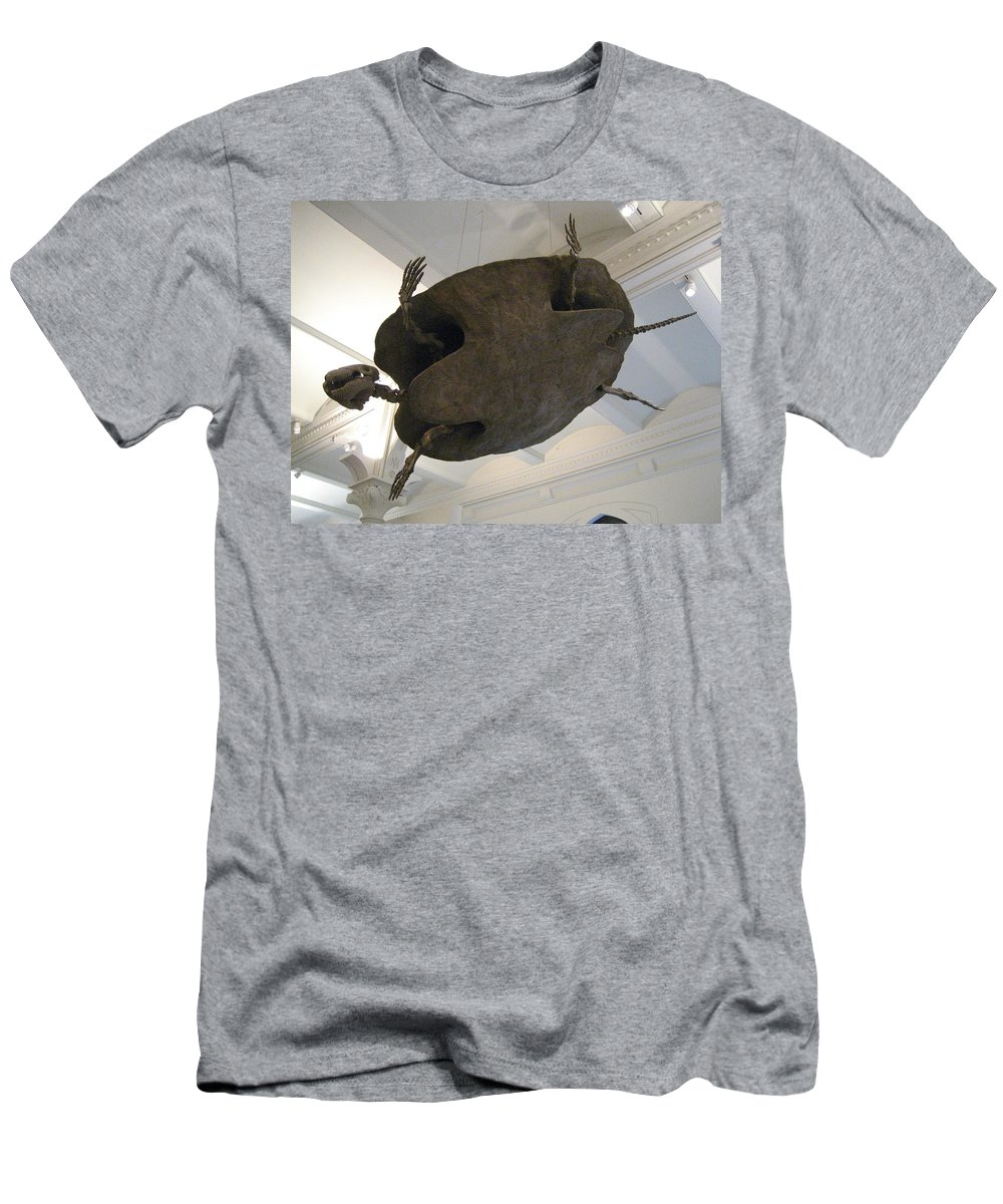 Turtle Men's T-Shirt (Athletic Fit) featuring the photograph Turtle by Brian McDunn