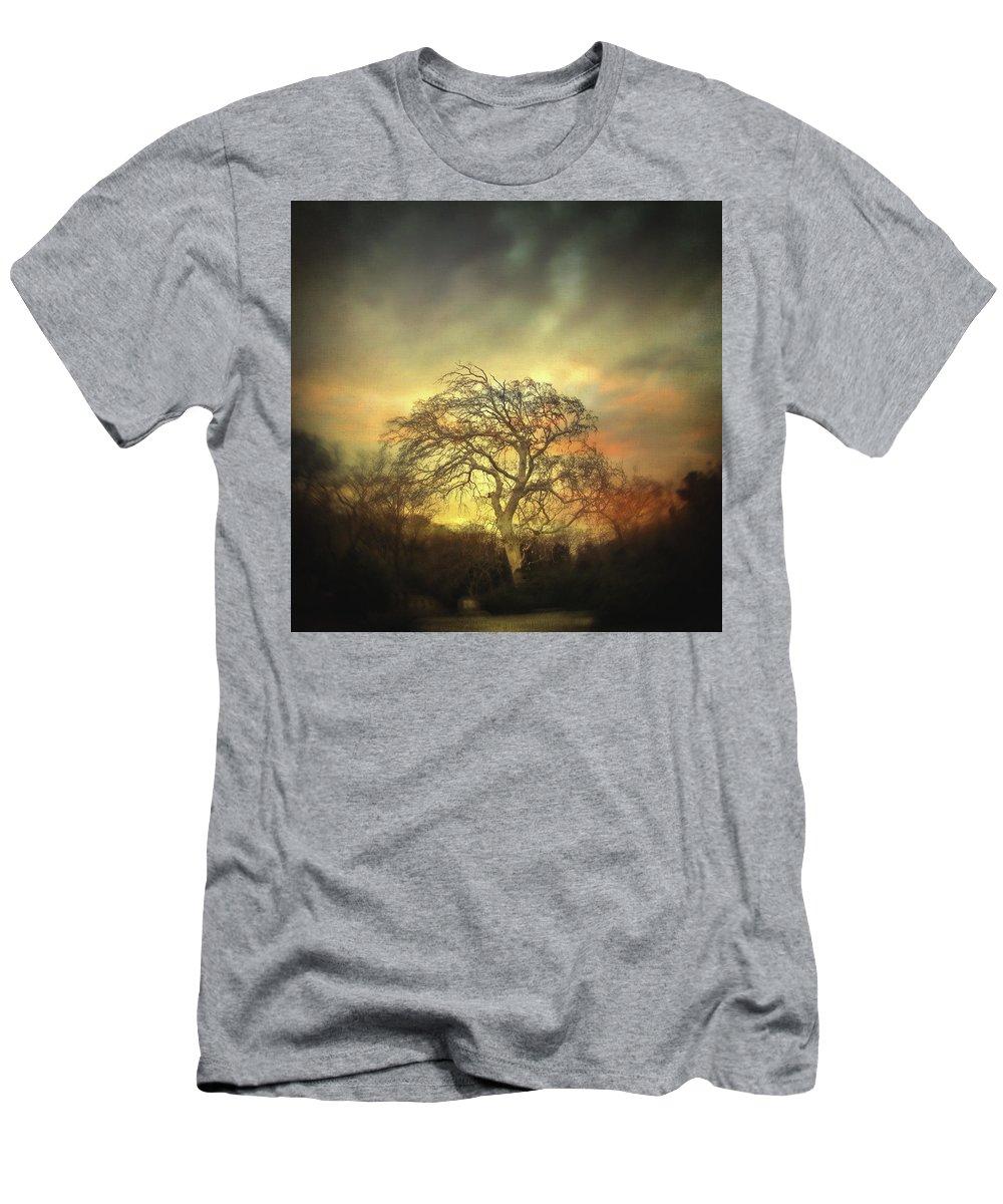 Tree T-Shirt featuring the photograph Un Dernier Crepuscule by Zapista OU