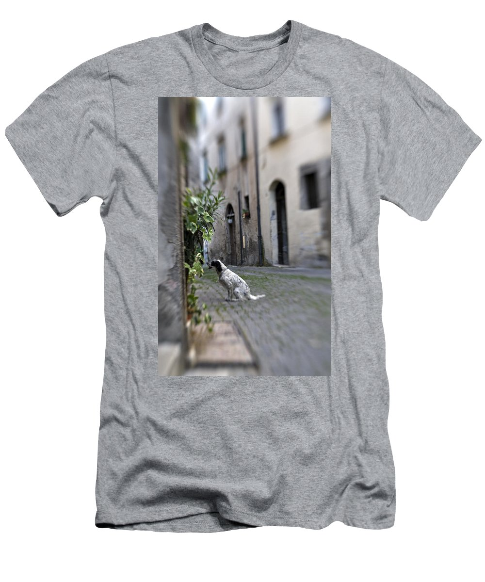 Dog Men's T-Shirt (Athletic Fit) featuring the photograph Waiting by Marilyn Hunt