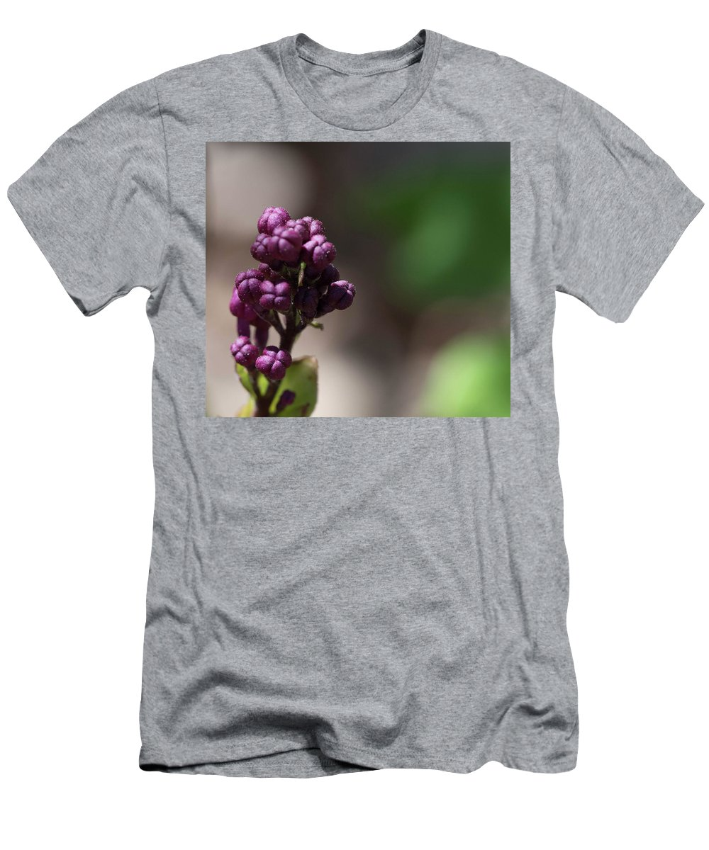 Buds Men's T-Shirt (Athletic Fit) featuring the photograph Waiting To Blossom by Dawn Dasharion