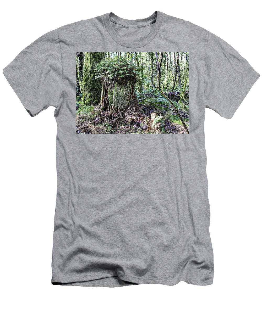 Stump Men's T-Shirt (Athletic Fit) featuring the photograph We're Not In Colorado Anymore Toto by Lorraine Baum