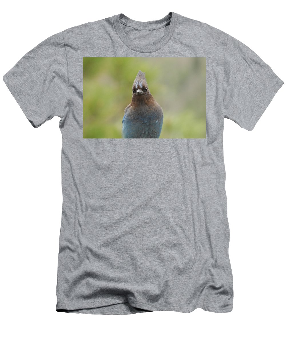 Bird Men's T-Shirt (Athletic Fit) featuring the photograph Whadda You Lookin At by Donna Blackhall