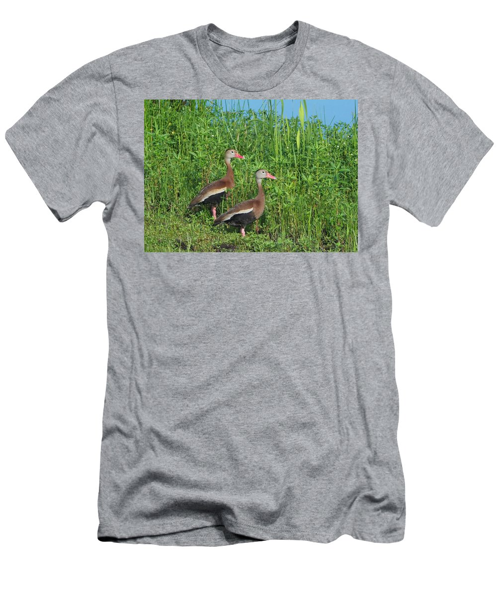 Black-bellied Men's T-Shirt (Athletic Fit) featuring the photograph Whistling Ducks by Farol Tomson