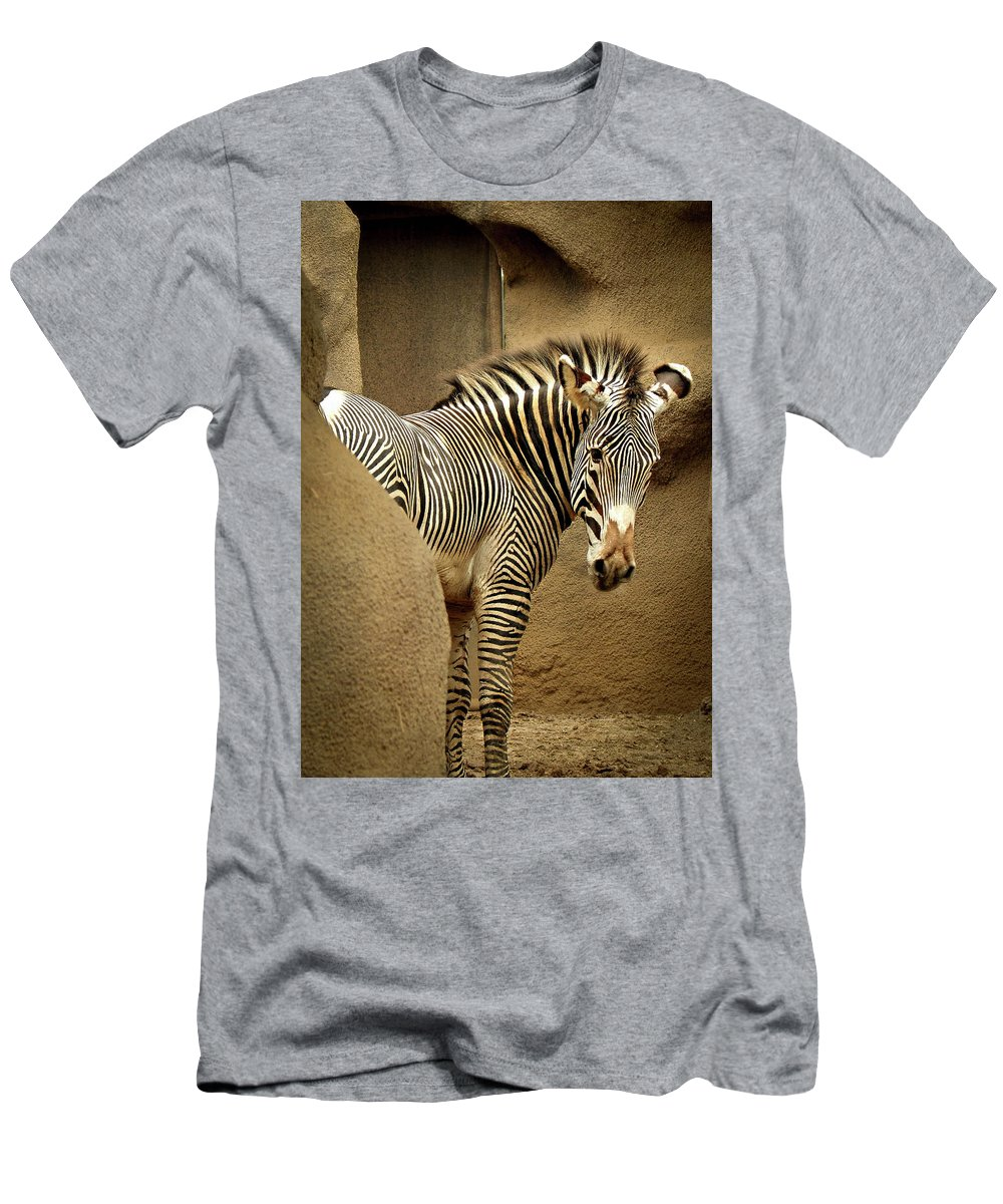 Zebra Men's T-Shirt (Athletic Fit) featuring the photograph Who Me by Kristie Ferrick