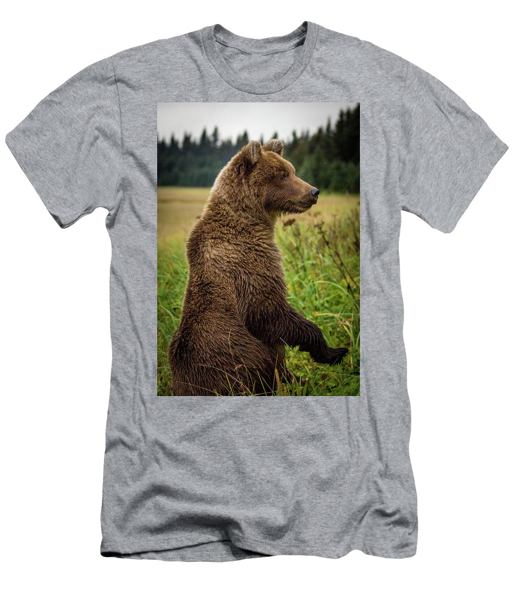 Alaska Bear Men's T-Shirt (Athletic Fit) featuring the photograph Who's There by Kathy Whitehurst