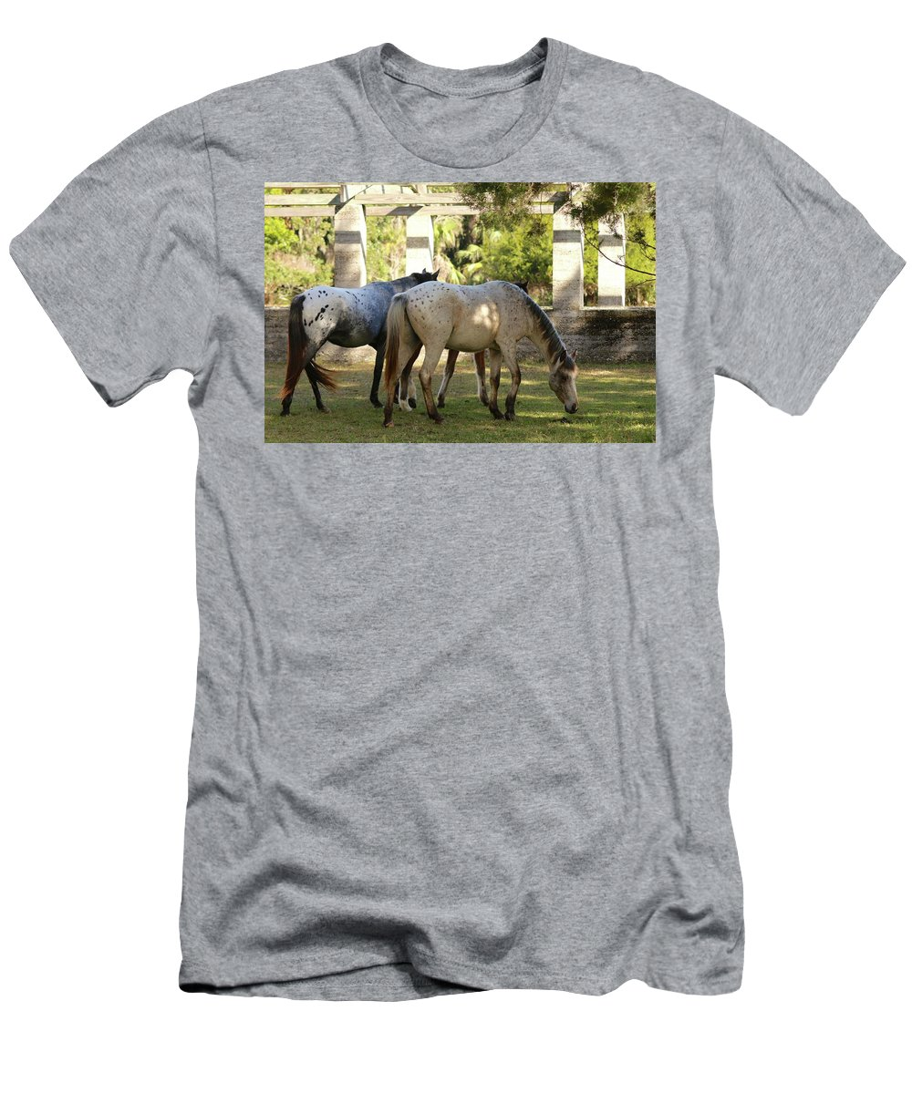 Cumberland Island Men's T-Shirt (Athletic Fit) featuring the photograph Wild Horses Of Cumberland by Beverly Cummiskey