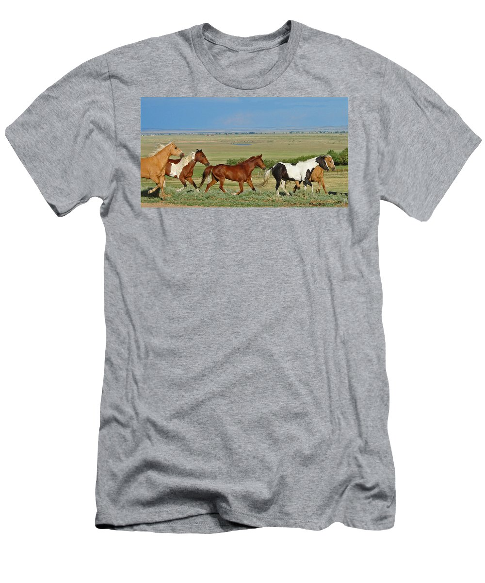 Herd Men's T-Shirt (Athletic Fit) featuring the photograph Wild Horses Wyoming by Heather Coen
