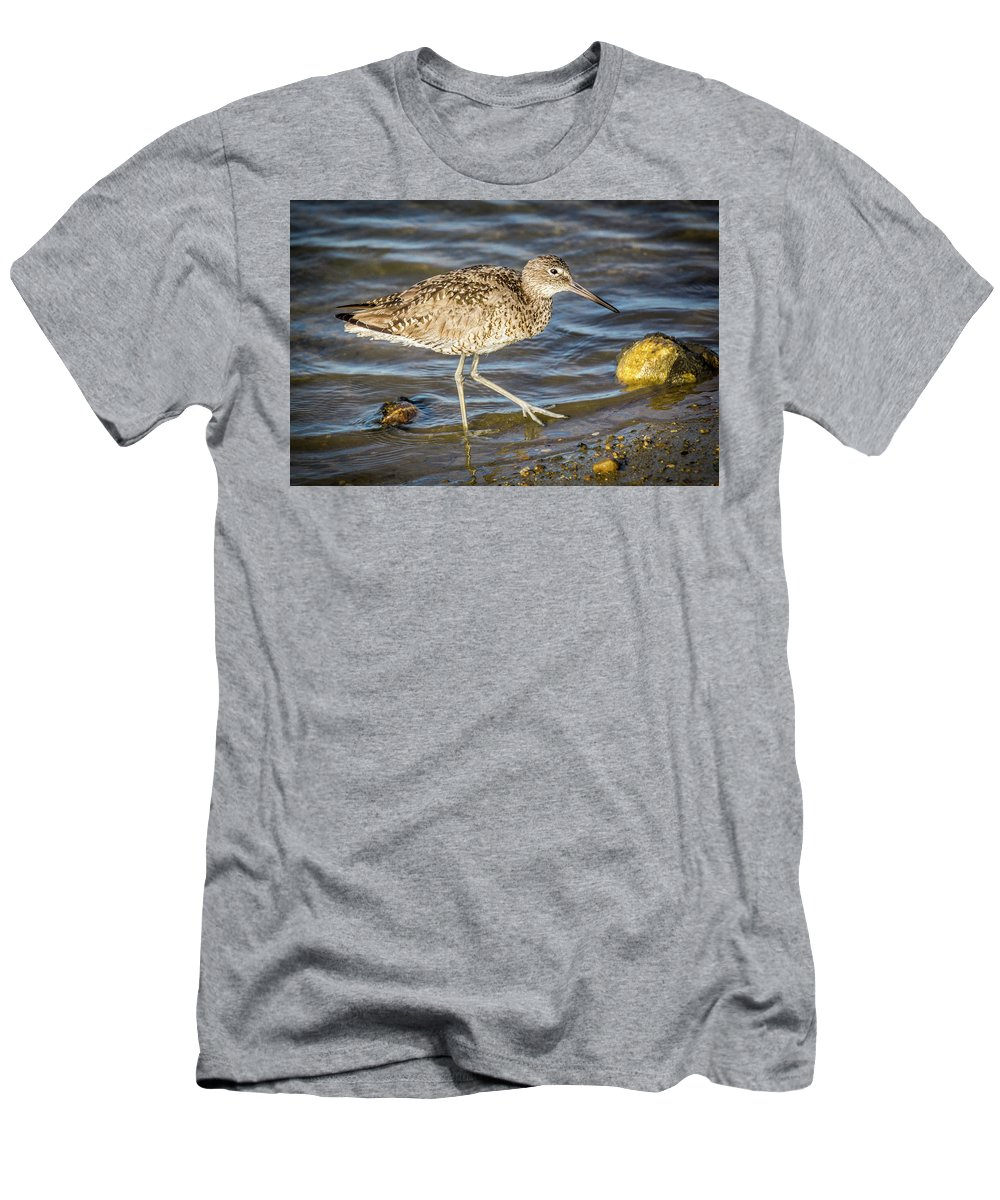 Bolsa Chica Ethological Reserve Men's T-Shirt (Athletic Fit) featuring the photograph Willet Feeding In The Marsh 1 by Donald Pash