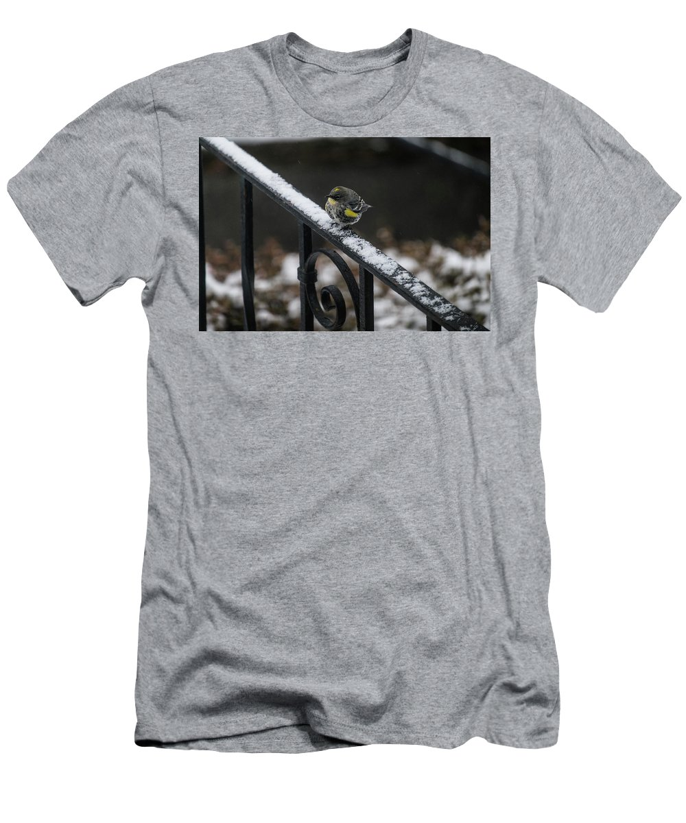 Warbler Men's T-Shirt (Athletic Fit) featuring the photograph Winter Morning by Teresa Herlinger