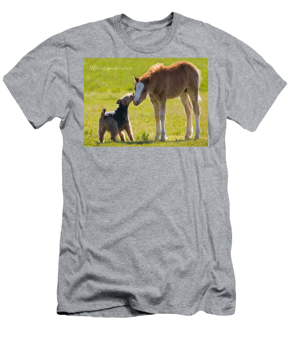 Baby Men's T-Shirt (Athletic Fit) featuring the photograph Wishing You Were Here by Karen Ulvestad