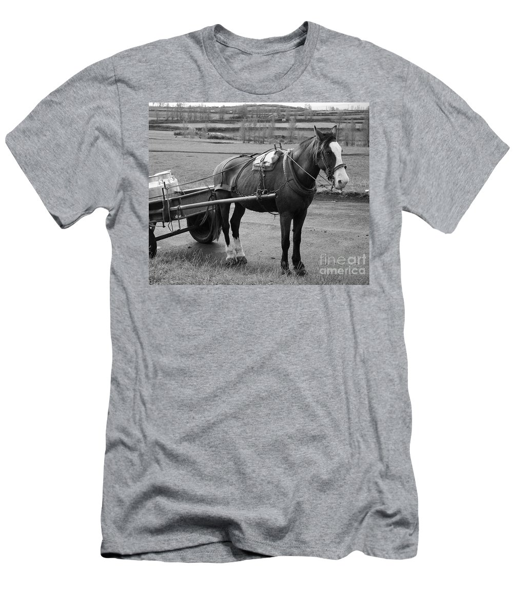 Cart Men's T-Shirt (Athletic Fit) featuring the photograph Work Horse And Cart by Gaspar Avila