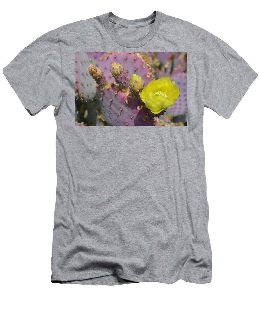 Cactus Men's T-Shirt (Athletic Fit) featuring the photograph Yellow Desert Bloom by Aimee L Maher ALM GALLERY