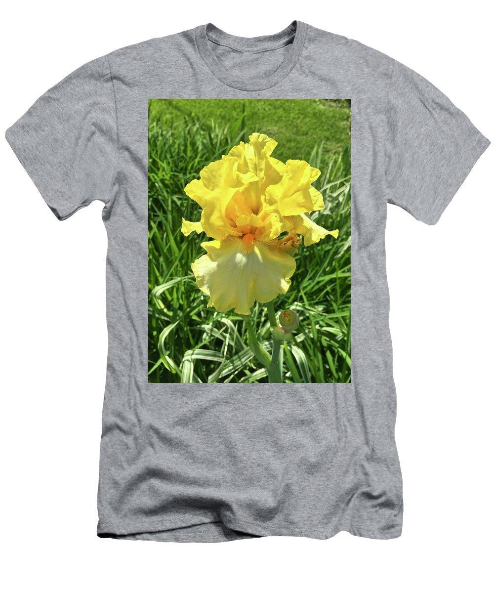 Iris Men's T-Shirt (Athletic Fit) featuring the photograph Yellow Iris by Janice Petrella-Walsh