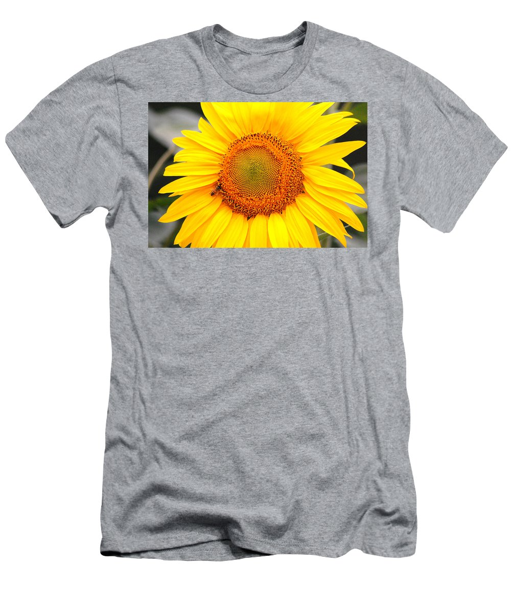 Sunflower Men's T-Shirt (Athletic Fit) featuring the photograph Yellow Sunflower With Bee by Amy Fose