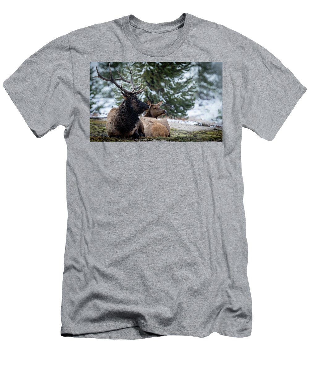 Scenic Men's T-Shirt (Athletic Fit) featuring the photograph Yellowstone Wild by Gary Migues