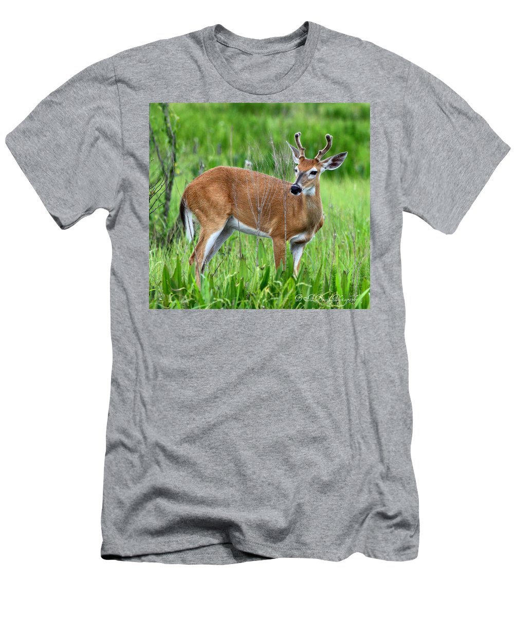 White Tail Deer Men's T-Shirt (Athletic Fit) featuring the photograph Young Buck by Barbara Bowen