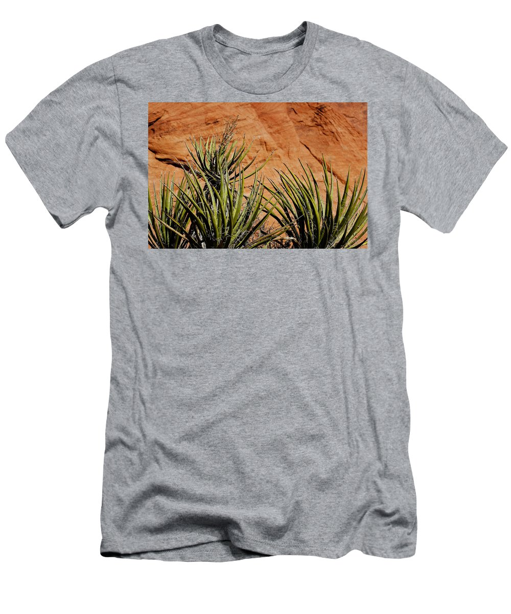 Yucca Plant Men's T-Shirt (Athletic Fit) featuring the photograph Yucca Family by Kelley King