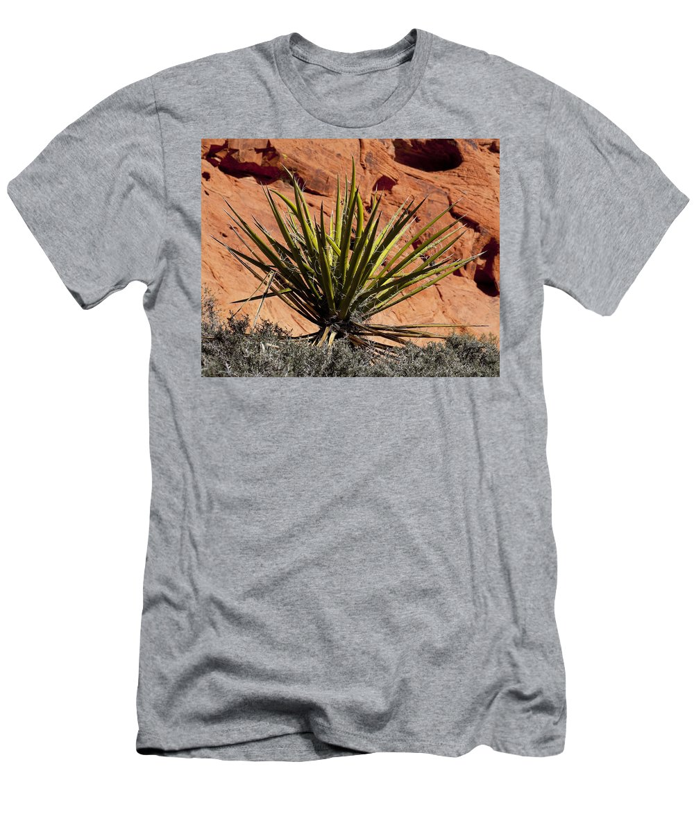 Yucca Plant Men's T-Shirt (Athletic Fit) featuring the photograph Yucca Two by Kelley King