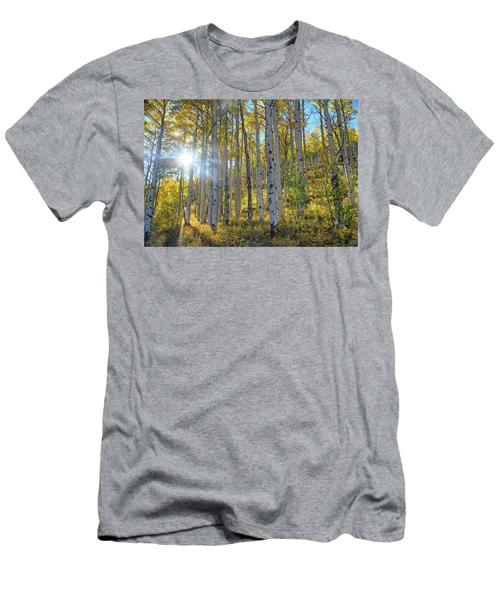Aspens Men's T-Shirt (Athletic Fit) featuring the photograph Afternoon Aspens by Brian Kerls
